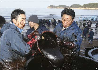 Local residents use baskets to remove dense crude oil at the Mallipo beach, South Korea
