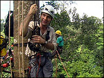 David Shukman in the canopy of a rainforest (Image: BBC)
