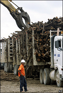 Lorry loarded with logs (Image: AP)