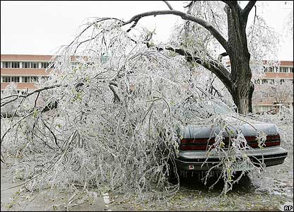 An ice covered tree covers a car at the University of Oklahoma