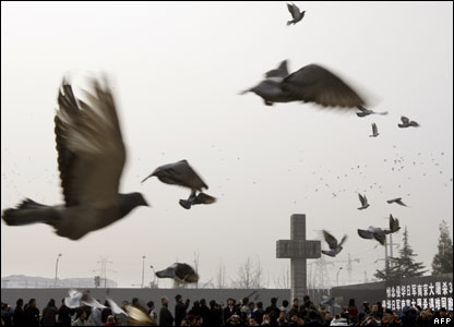 Pigeons released over Nanjing
