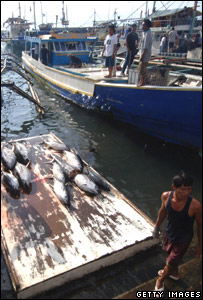 Fishermen at the General Santos port, in the Philippines
