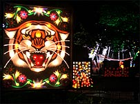 Walsall Illuminations in past years
