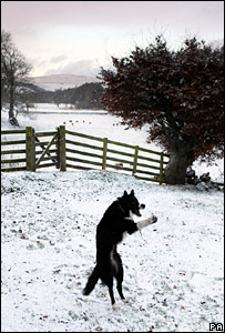 Snow in Scottish Borders