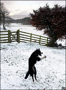 Snow in the Scottish Borders