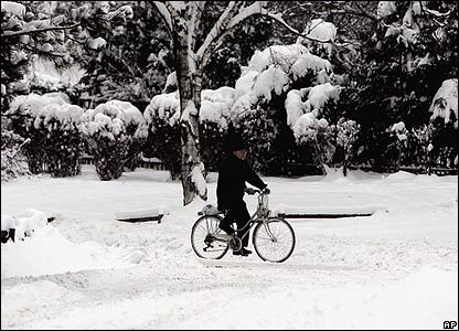 A cyclist riding in the park in Belgrade