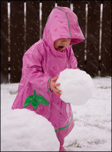 Graham Scott's daughter Iona helping to build her first snowman of 2008 in Alford, Aberdeenshire.