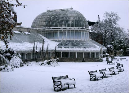 Snow-covered botanical gardens in Belfast