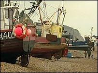 Hastings fishing fleet