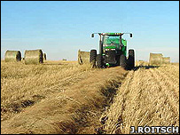 Harvesting switchgrass (Image: Jerry Roitsch)