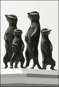 Model of meerkats