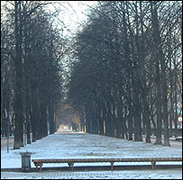 Moscow park in winter