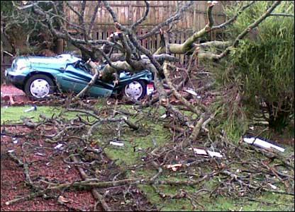Tree on car in Burnside, near Glasgow.