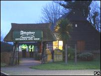 Abbotsbury Swannery, Dorset