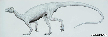 Artist's impression of Thecodontosaurus (Arrill Johnson / Bristol Dinosaur Project)
