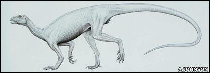 Artist's impression of Thecodontosaurus (Arrill Johnson / Bristol Dinosaur Project)