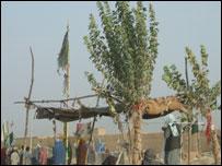 Arab cemetery in Kandahar