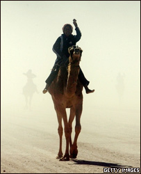 Человек на верблюд
