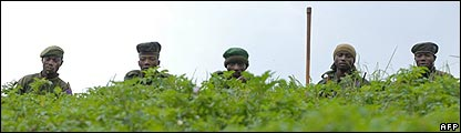 Congolese government soldiers sit in a line in a field