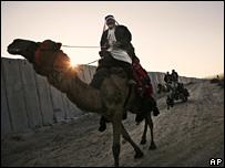 Hombre cruzando Rafah en camello el 24 de enero