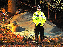 A police officer guards the wreckage of the helicopter