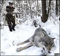 Hunter with freshly-killed wolf