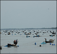 Fishing boats in the Sunderbans