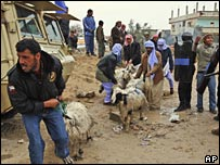 Palestinians herd sheep over the border crossing between Egypt and Rafah, southern Gaza (29/01/2008)