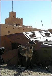 Tank in Kidal