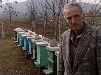 Ditran Morina and his beehives