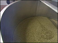 The grain in the brewing process