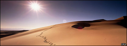 Sand dunes (Science Photo Library)