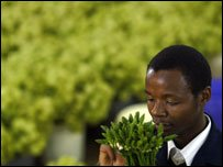 A Kenyan horticulture employee tends to flowers at a firm in Thika