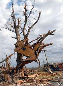 Tornado damage in Aldridge Grove, Alabama