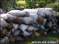 Confiscated charcoal (Image: WildlifeDirect)