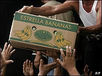 Bananos de exportaci�n de Panam�. Foto AP
