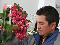 Worker at Wayuu Flowers, Colombia