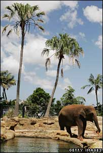 The zoo has defended itself against claims of irresponsibility