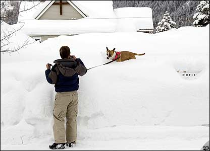 Man walking dog on snow bank 14/2/08