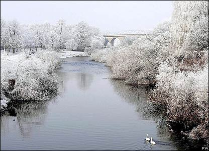 Two swans brave the frost in North Yorkshire, England