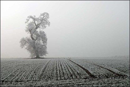 Hoar frost in North Yorkshire