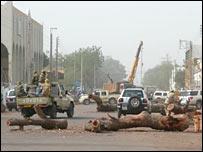 Felled ancient trees in N'Djamena