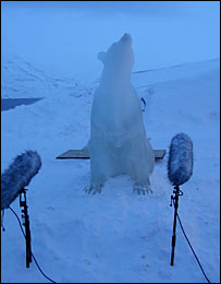 Polar bear ice sculpture (BBC)