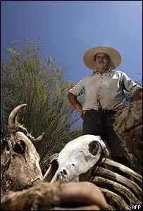 Campesino afectado por sequía en Chile.