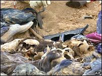 Skulls, bones and clothing found in 2005 in mass shallow graves near Baghdad that were dug at the time of the Anfal campaign