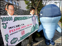 Japan Whale Protest