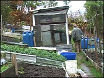 An allotment holder at his shed