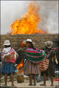 Tonnes of coca leaves grown illegally in the village of Huaculi, central Bolivia, are burnt (Dec 2007)