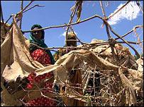 Displaced in Baidoa