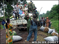 Patrol searching for illegal charcoal (Image: WildlifeDirect)
